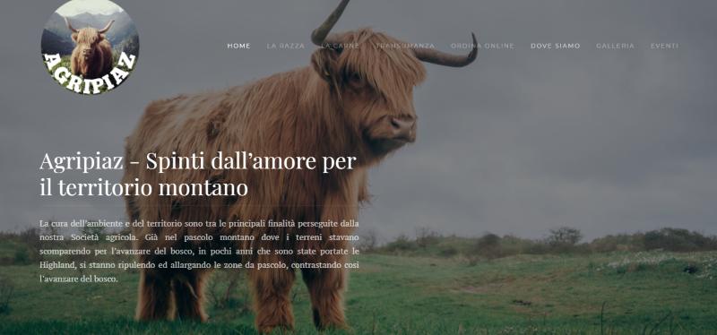 Realizzazione sito web joomla - web desgn - graphic design - metaweb web agency